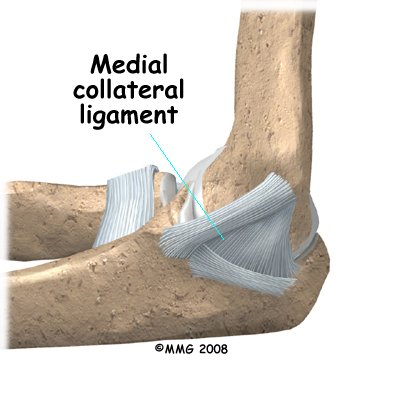elbow_dislocation_anatomy03