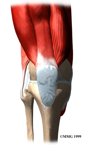 knee_prepatellar_synptoms01