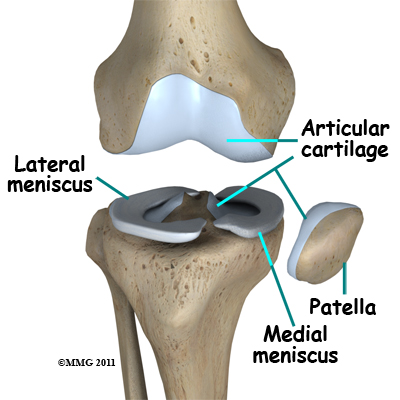 new_knee_arthroscopy_menisci04