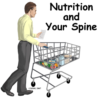 spine_general_nutrition_intro01